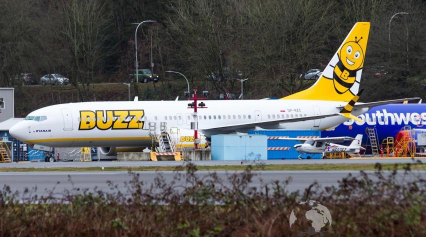 Buzz 737 MAX