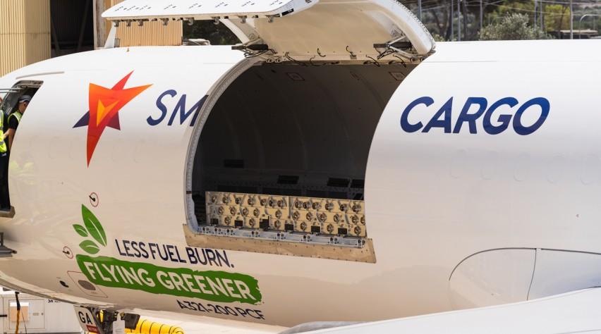 SmartLynx A321P2F