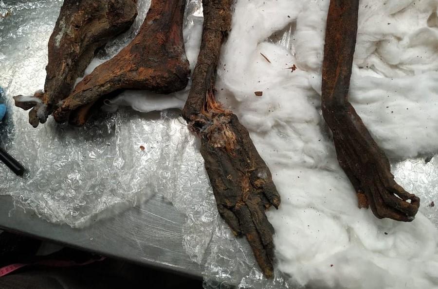 mummievondst